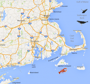 New England Yacht Charter Map