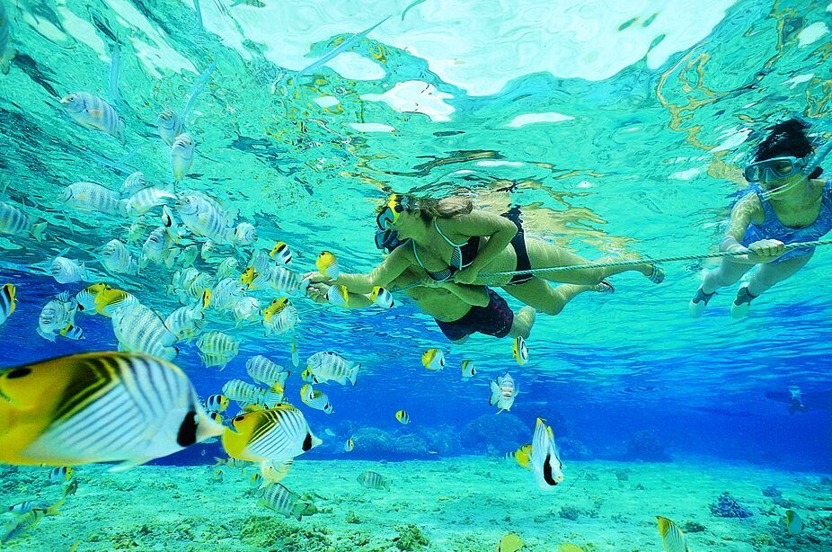 Family snorkeling in Belize off the catamaran S/Y AUBISQUE New Year's resolution