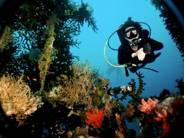 Diving in Papau New Guinea
