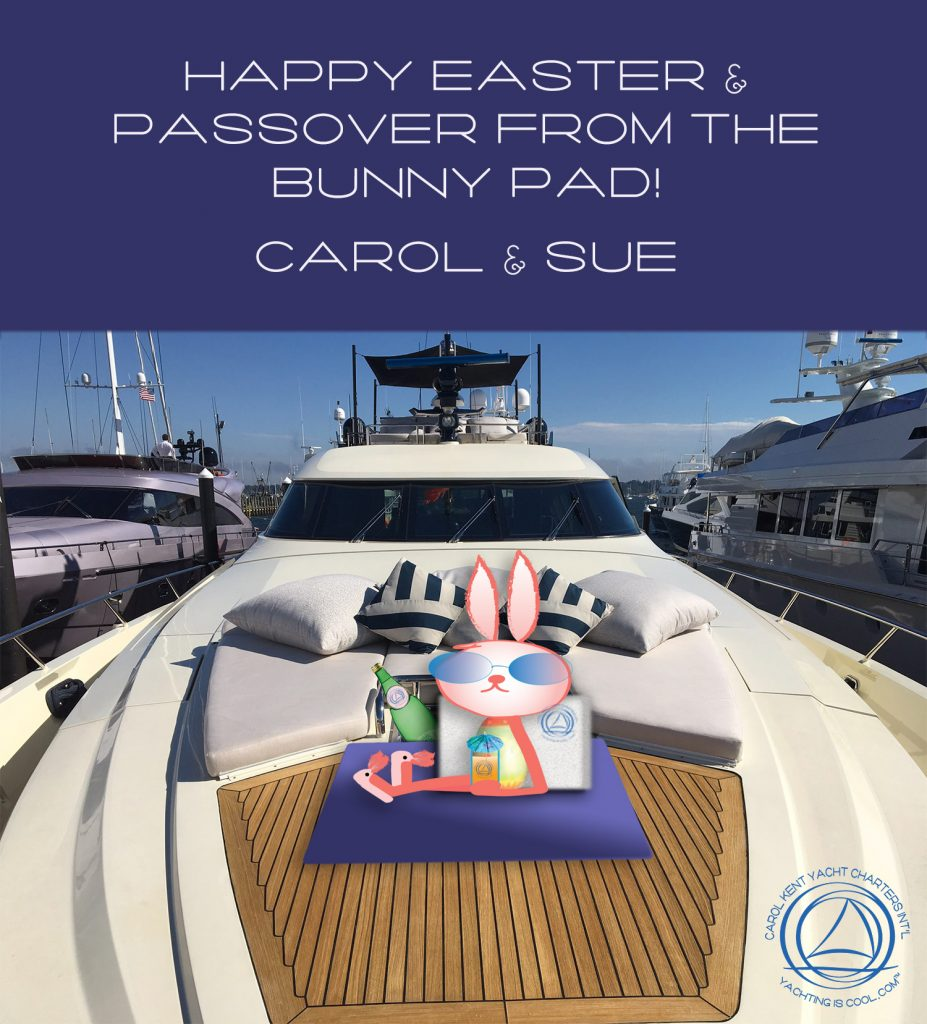 Bunny with sunglasses drinking a cool drink on bunny pad, a yacht term referring to the forward sundeck of a motorboat.