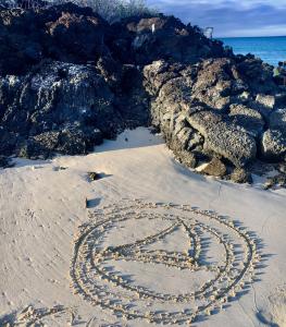ckyc-sand-logo