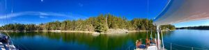 Pine-lined Napoleon Bay Sailing Sweden's Archipelago