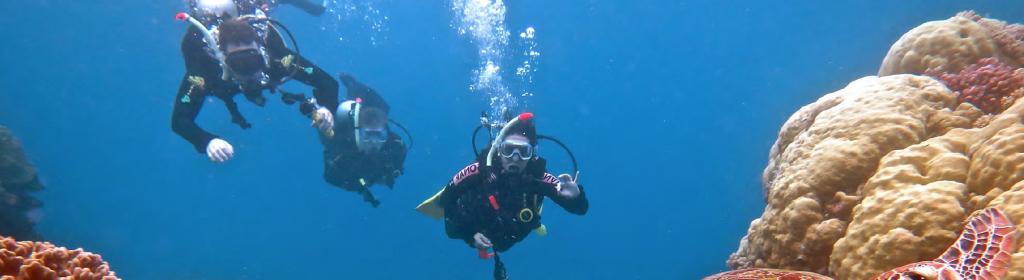 Scuba Divers Off M-Y BELUGA